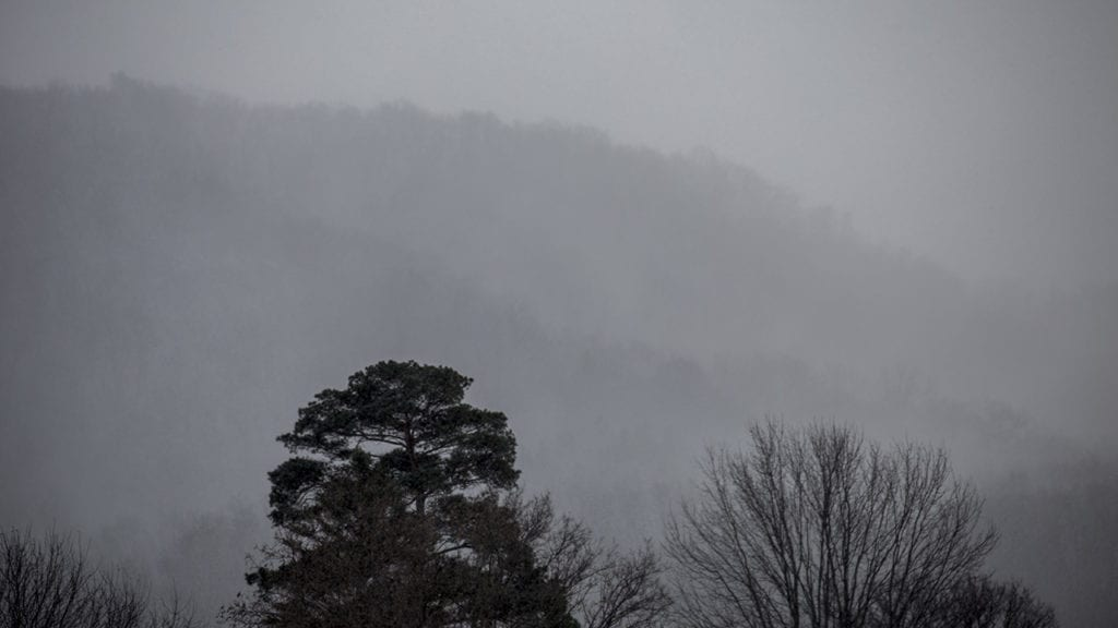 Weather Outlook: Freezing fog possible by morning, but more sunshine is on the way