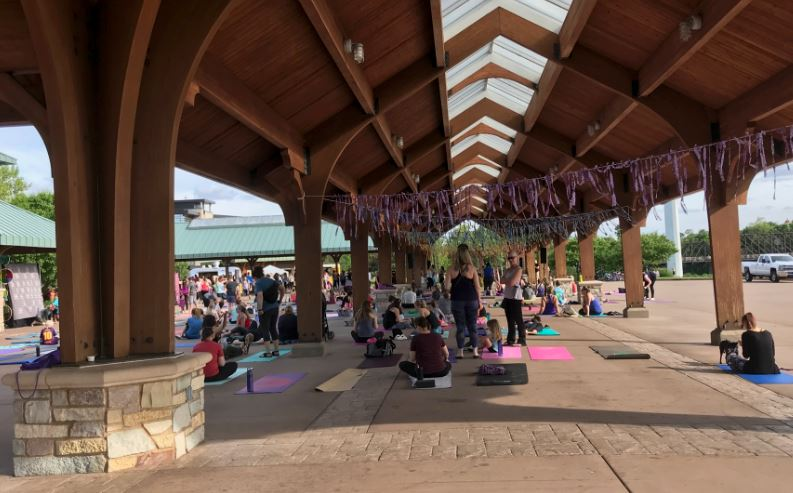 Hundreds of people show up to celebrate International Day of Yoga at Phoenix Park