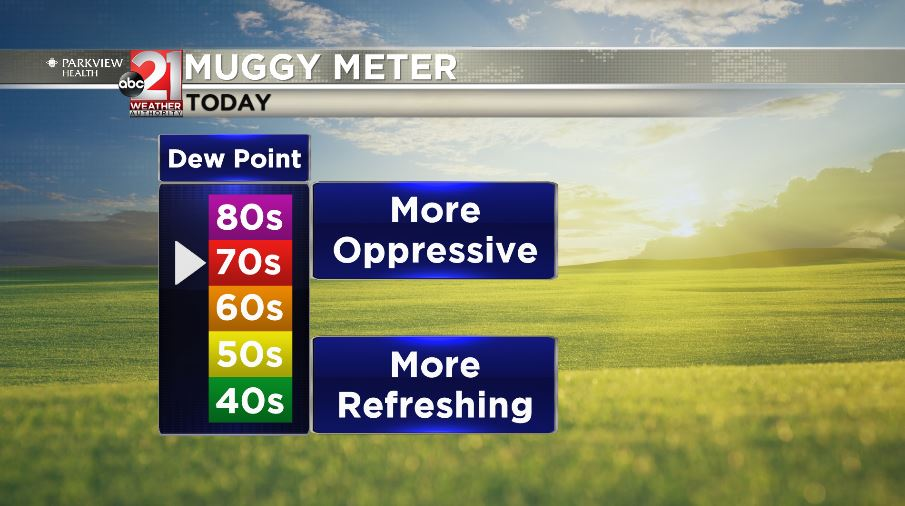 Humid with afternoon storms