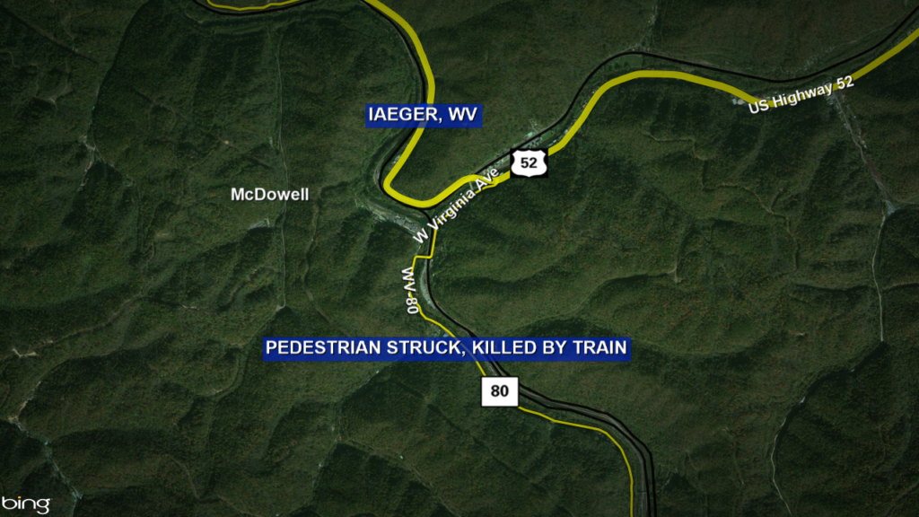 UPDATE: Police need help identifying woman struck, killed by train