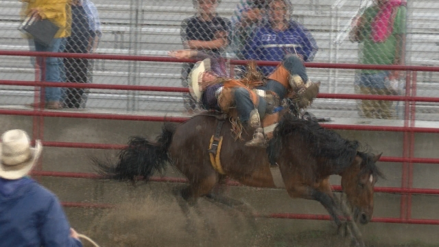 Tioga County Fair features first ever Painted Pony Championship