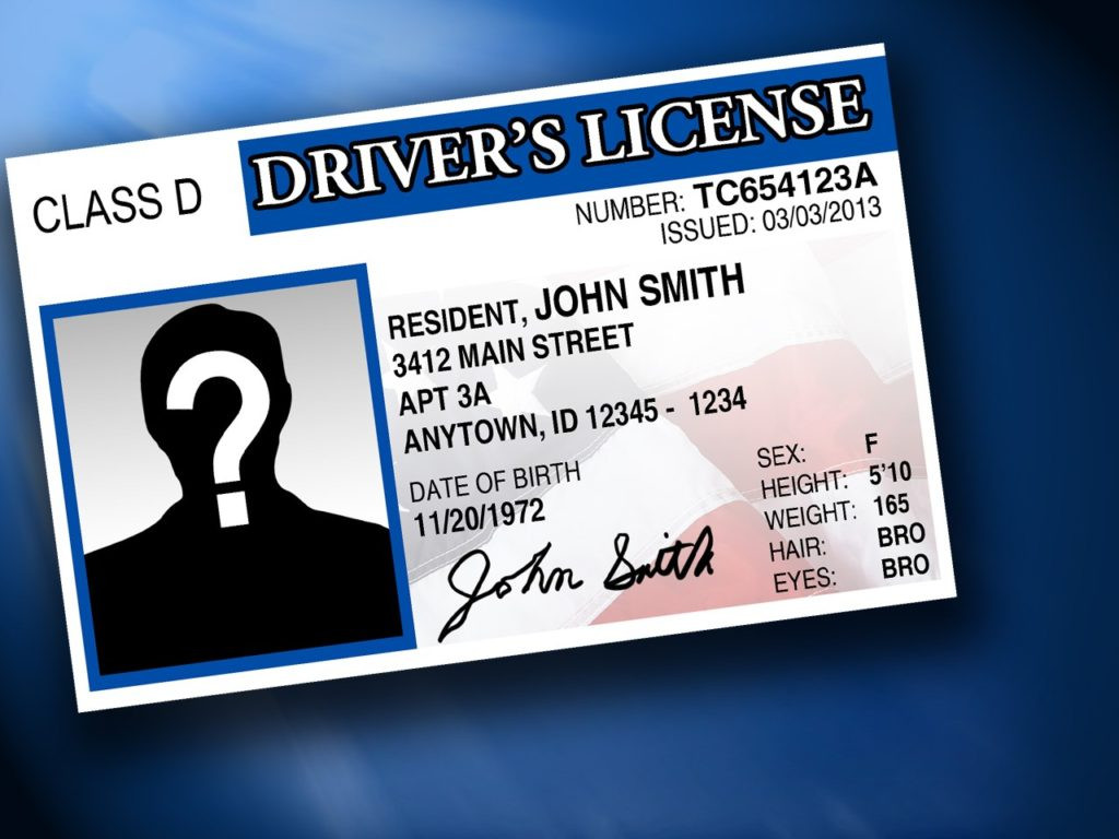 Minnesota House Backs Immigrant Driver Licenses