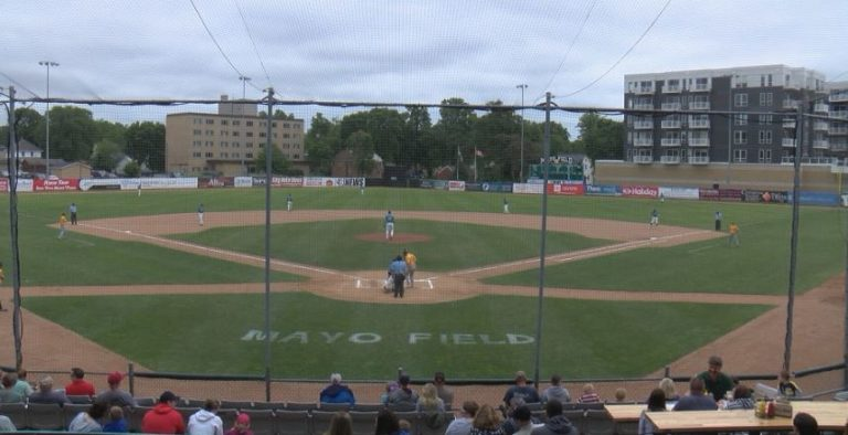 Rochester Honkers game