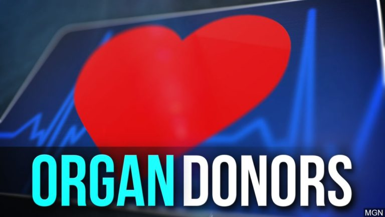 Organ Donors graphic, MGN