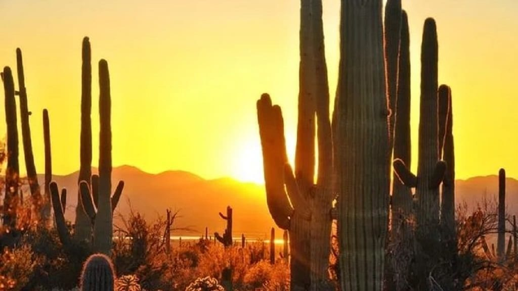 Weekend forecast: Conditions remain dry and hot in Tucson