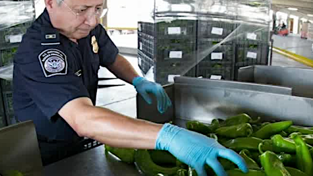 Increased inspection of certain produce at U.S. border