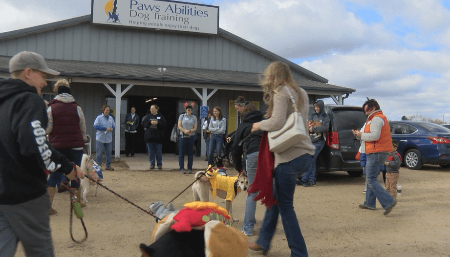 Paws Abilities Dog Training celebrates new facility with Halloween party