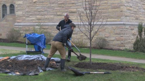 Sisters of Saint Francis plant tree on Earth Day
