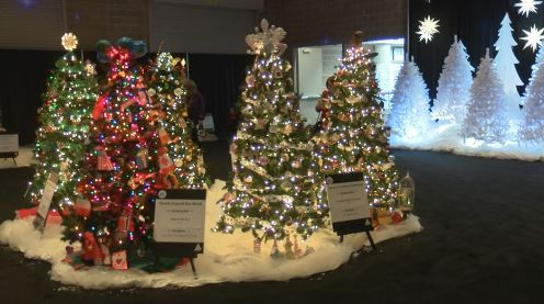 A sneak peek at this year's Festival of Trees