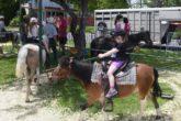 enfant sur un poney