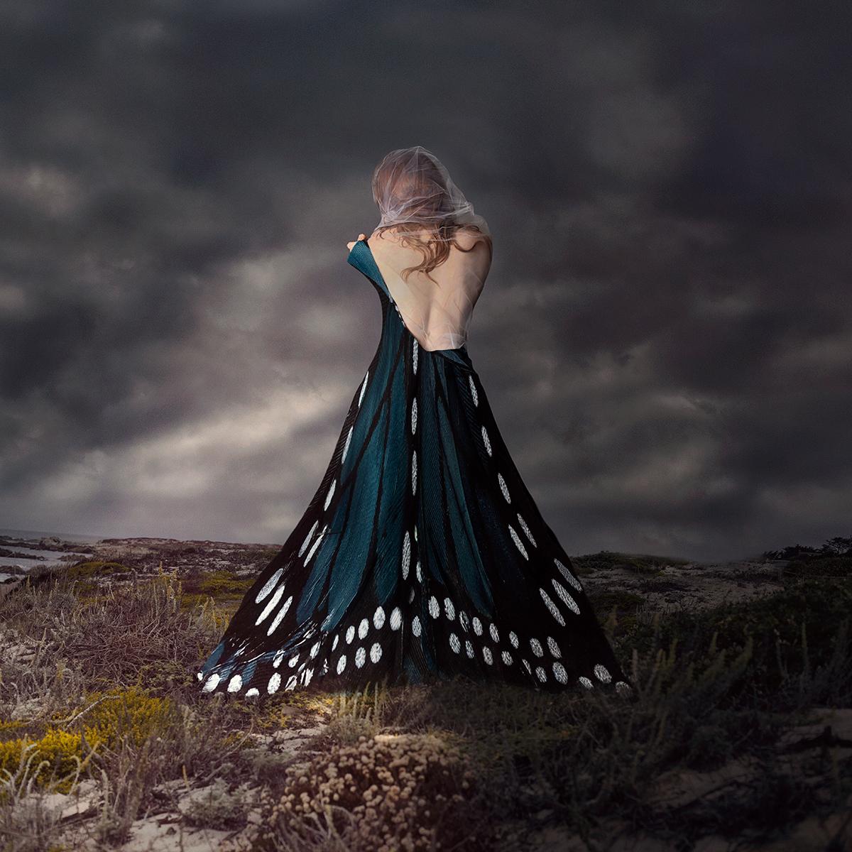 Lora Moore, Metamorphosis, 2018