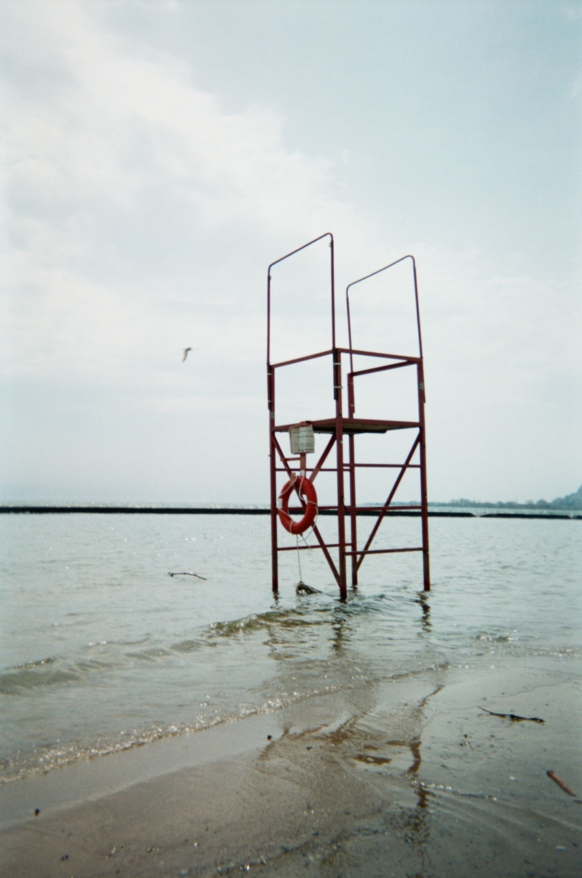Barbara Berryman, Untitled, 2019