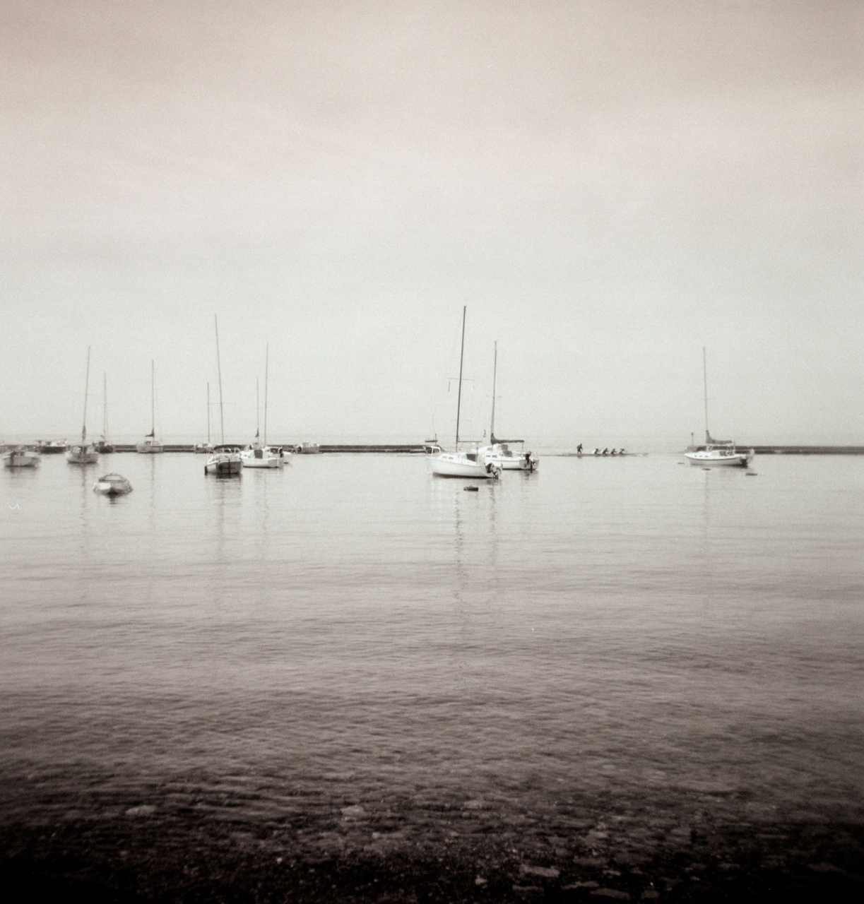 Nancy Bueler, Sail Boats, 2018