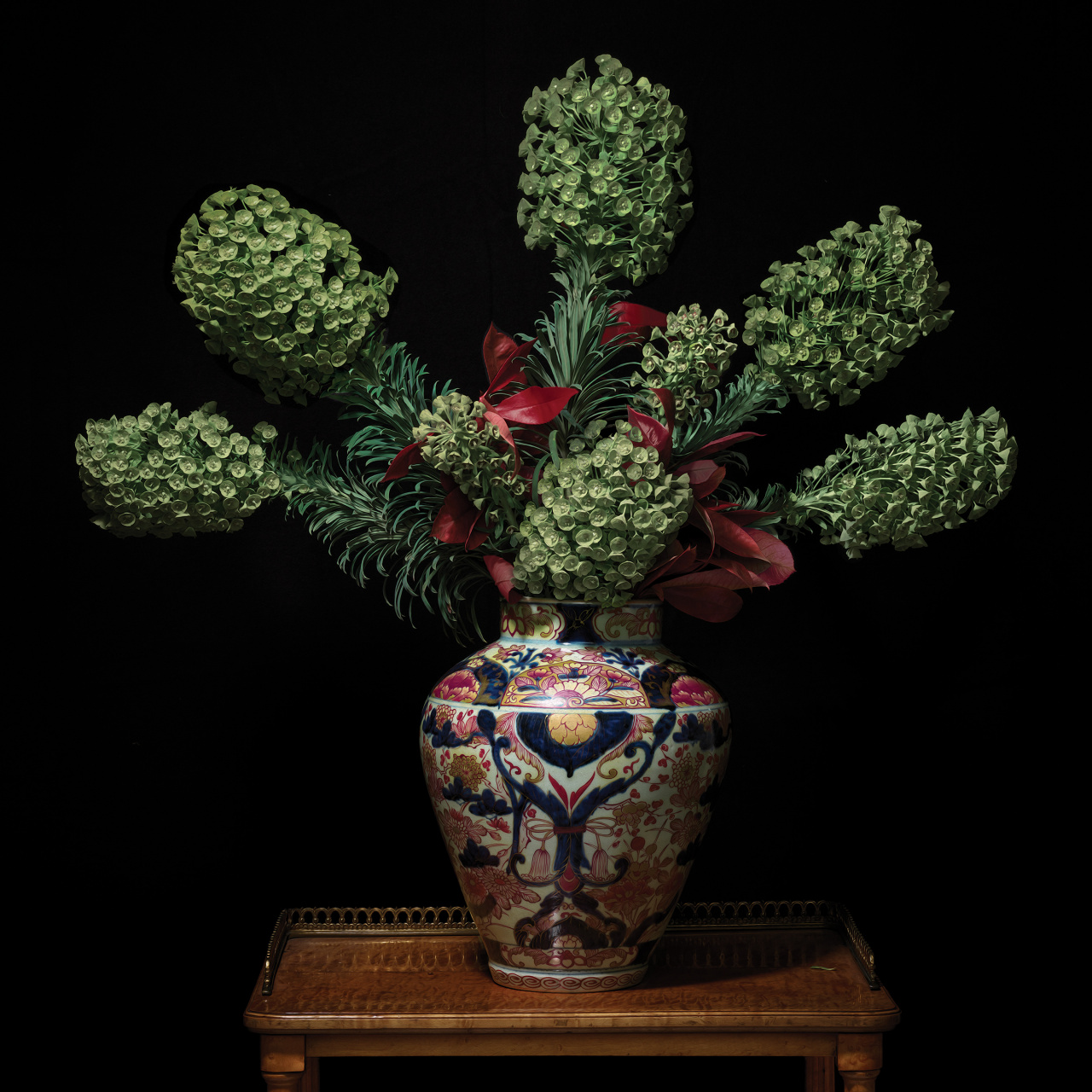 T.M. Glass, Euphorbia in a Japanese Imari Vessel, from the Royal Lodge series, 2018. Courtesy of the artist.