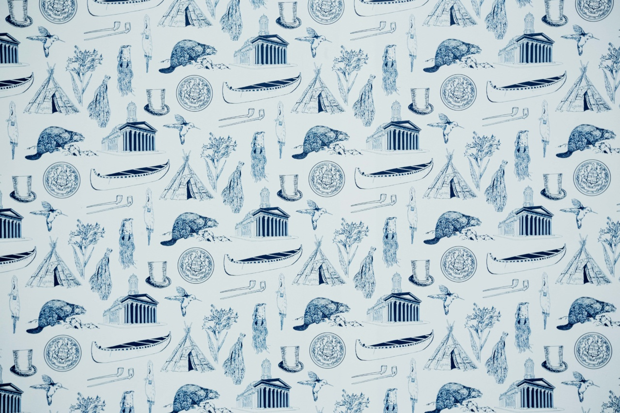 Nadia Myre, Contact in Monochrome (detail; installation at Toile de Jouy), (detail; installation in Toile de Jouy),  2018. Digital wallpaper print Courtesy of the artist and Art Mûr. Photo: Ross Fraser Mclean.