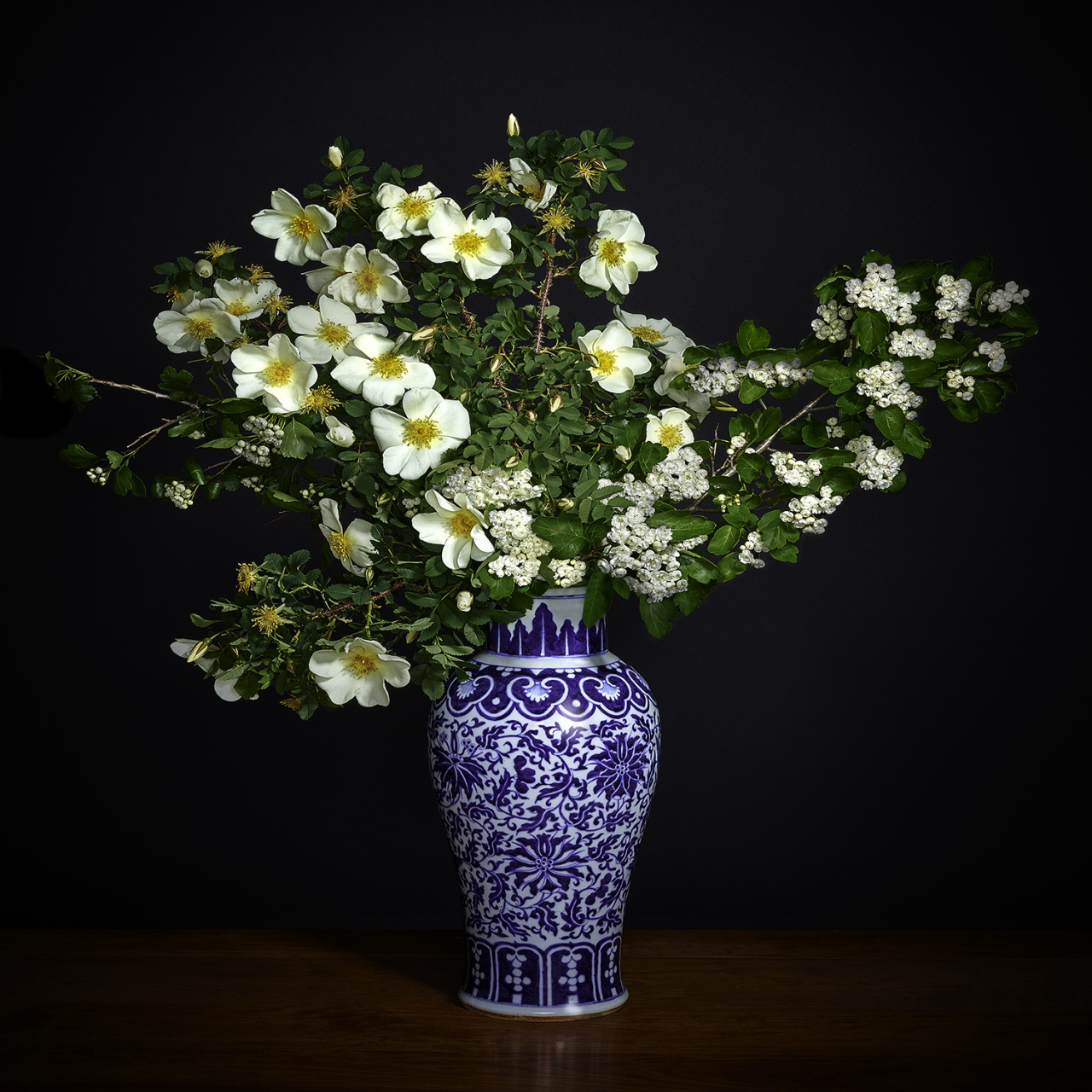 T.M. Glass, White Hawthorne White Shrub Rose in a Blue and White Chinese Vase, 2018