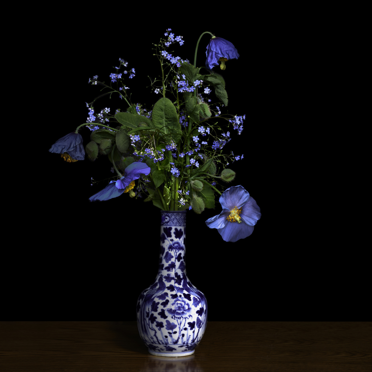 T.M. Glass, Blue Poppy in a Blue and White Chinese Vase, 2018