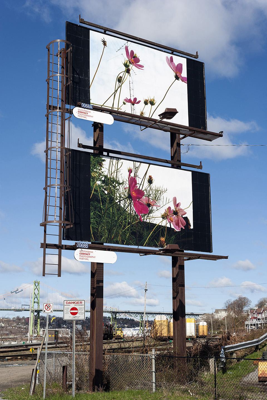 Seth Fluker, Blueberry Hill, installation view of billboards in Halifax. North St at Alderney Dr. 2017.