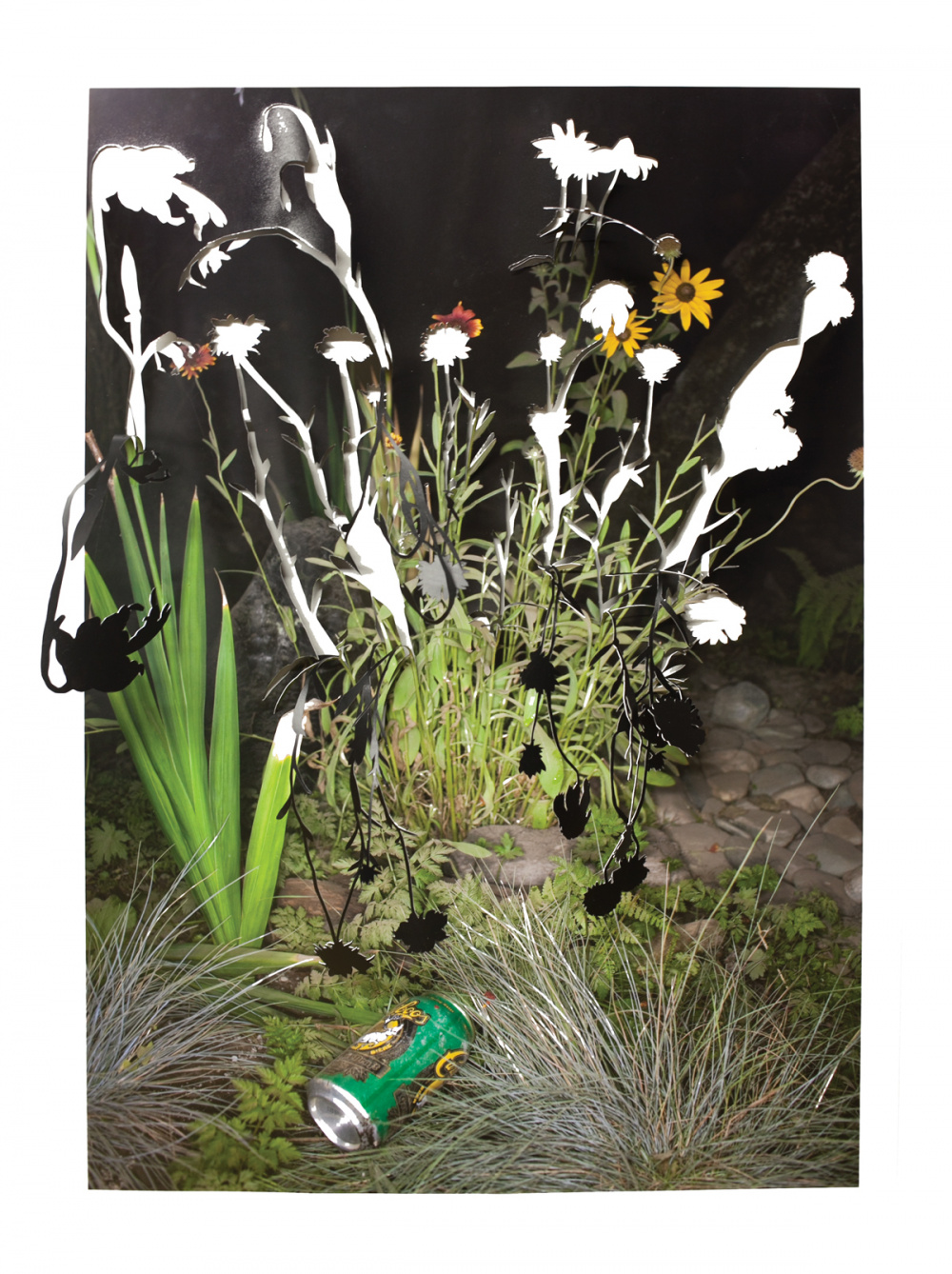 Sarah Anne Johnson, Drooping Flower and Beer Can, 2015. Chromogenic print, 30 x 20
