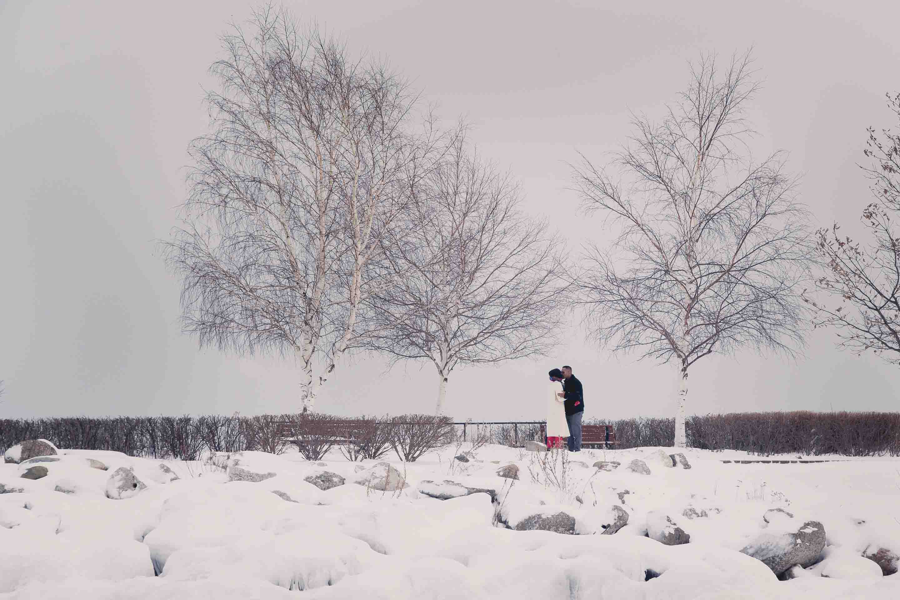 collingwood proposal photography