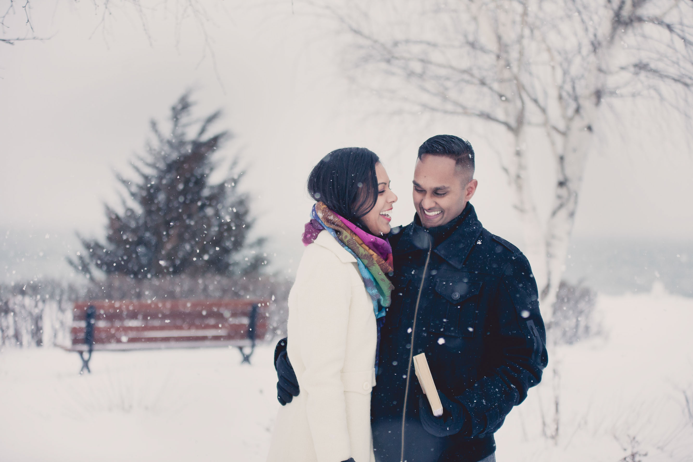 blue mountain proposal photography