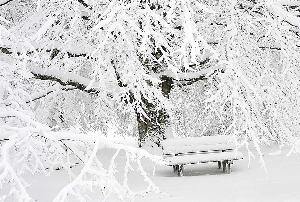 Your MS winter safety toolkit