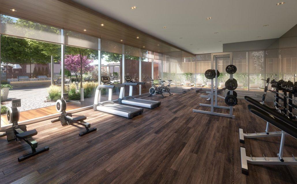 Tanu Condos Gym