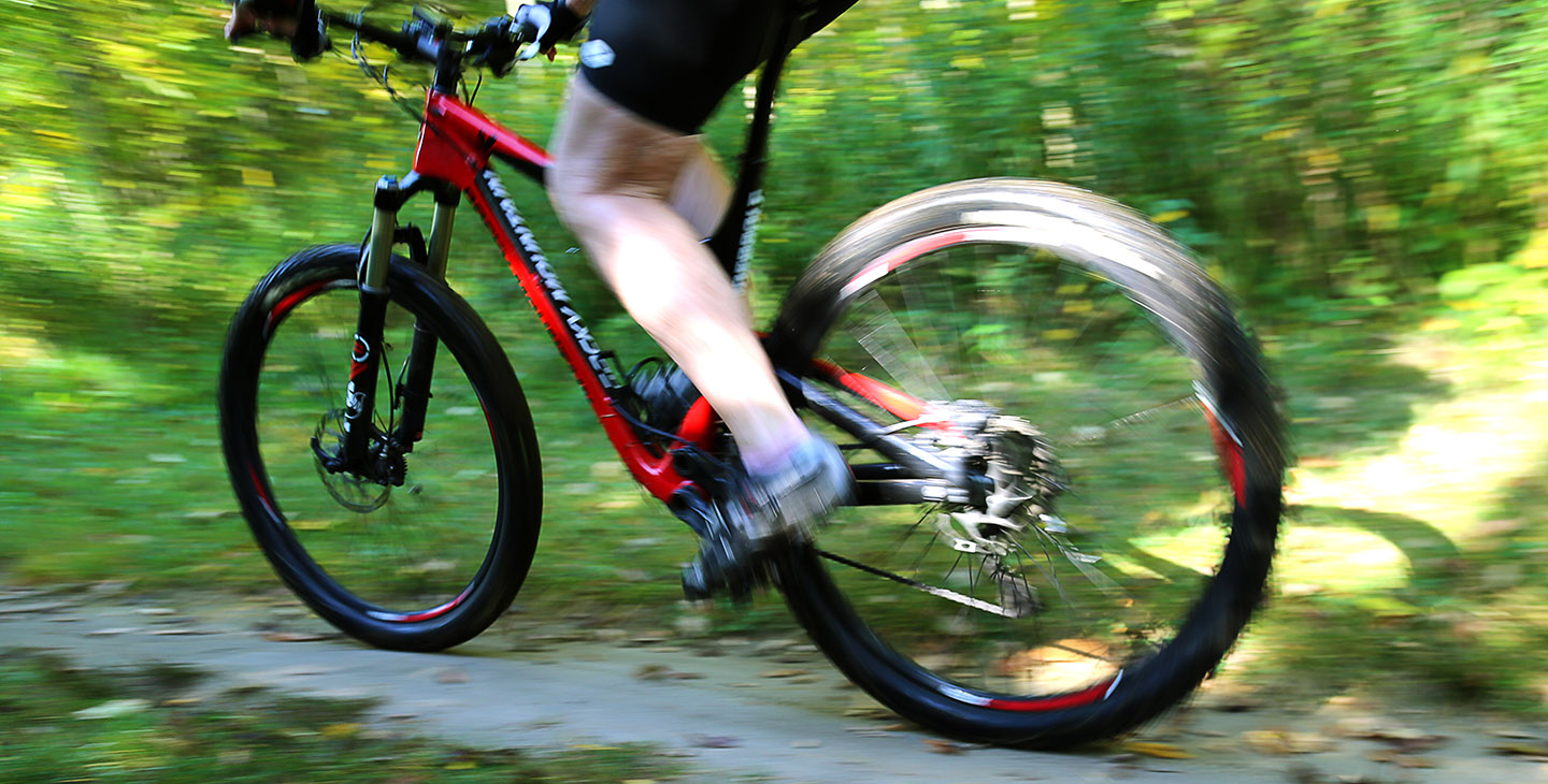 mountain biker on the trail at Albion Hills Conservation Area