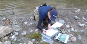 Stream Monitoring & Research Study Design Workshop @ Toronto and Region Conservation Authority (TRCA)