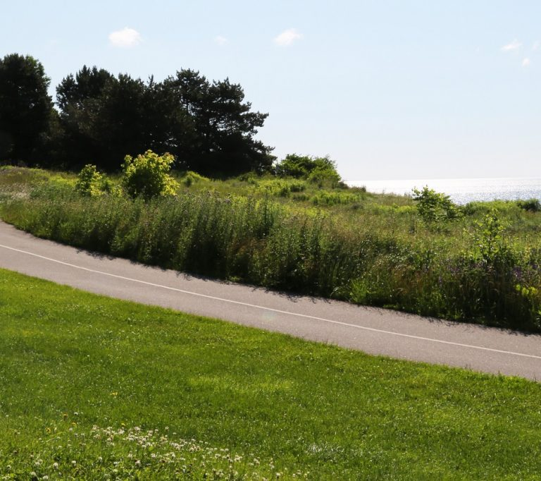 man walks dog on trail overlooking Lake Ontario at Petticoat Creek Conservation Park