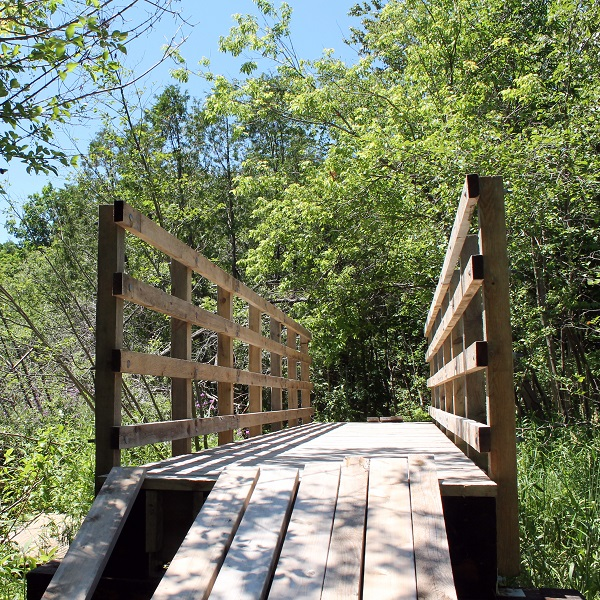 wooden bridge at bruces mill conservation park