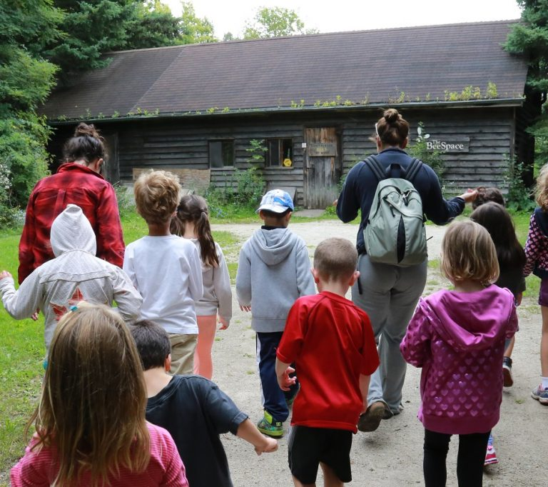 summer campers visit Bee Space at Kortright Centre for Conservation