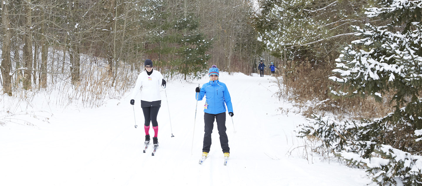 cross country skiers on trail at albion hills conservation area
