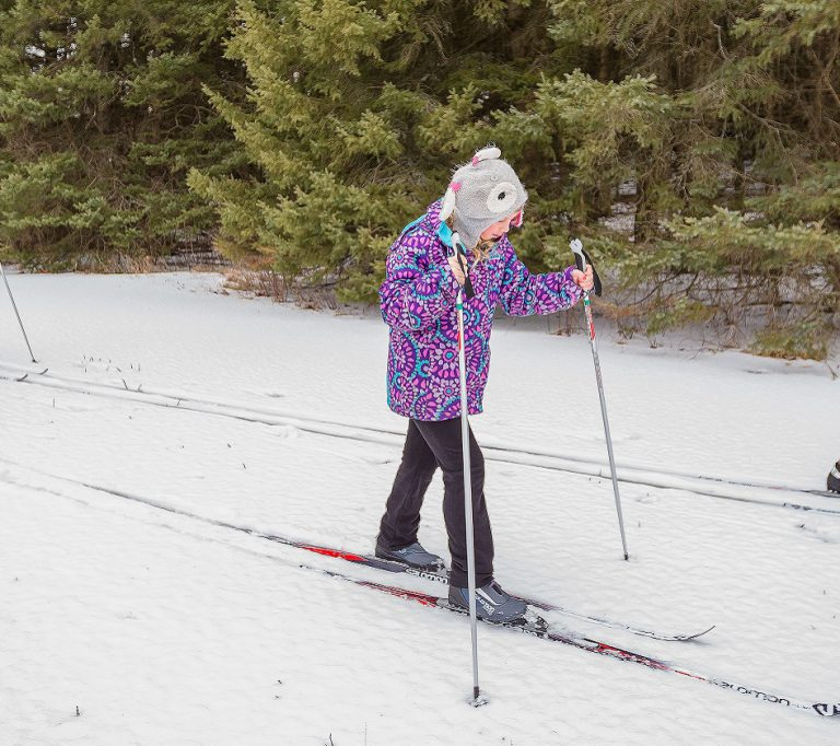 cross country skiers at Albion Hills Conservation Area