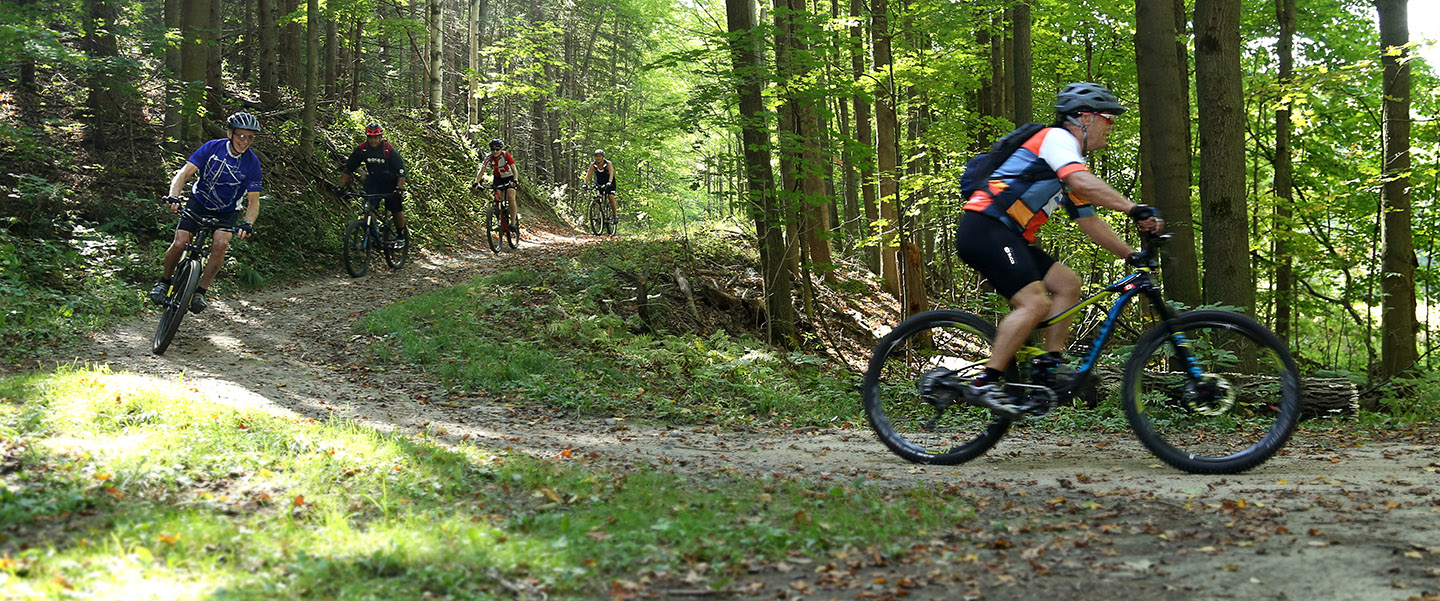 mountain bikers on the trail at albion hills conservation area