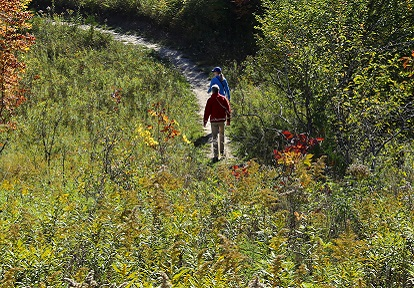 hikers on a trail in a TRCA Conservation Area