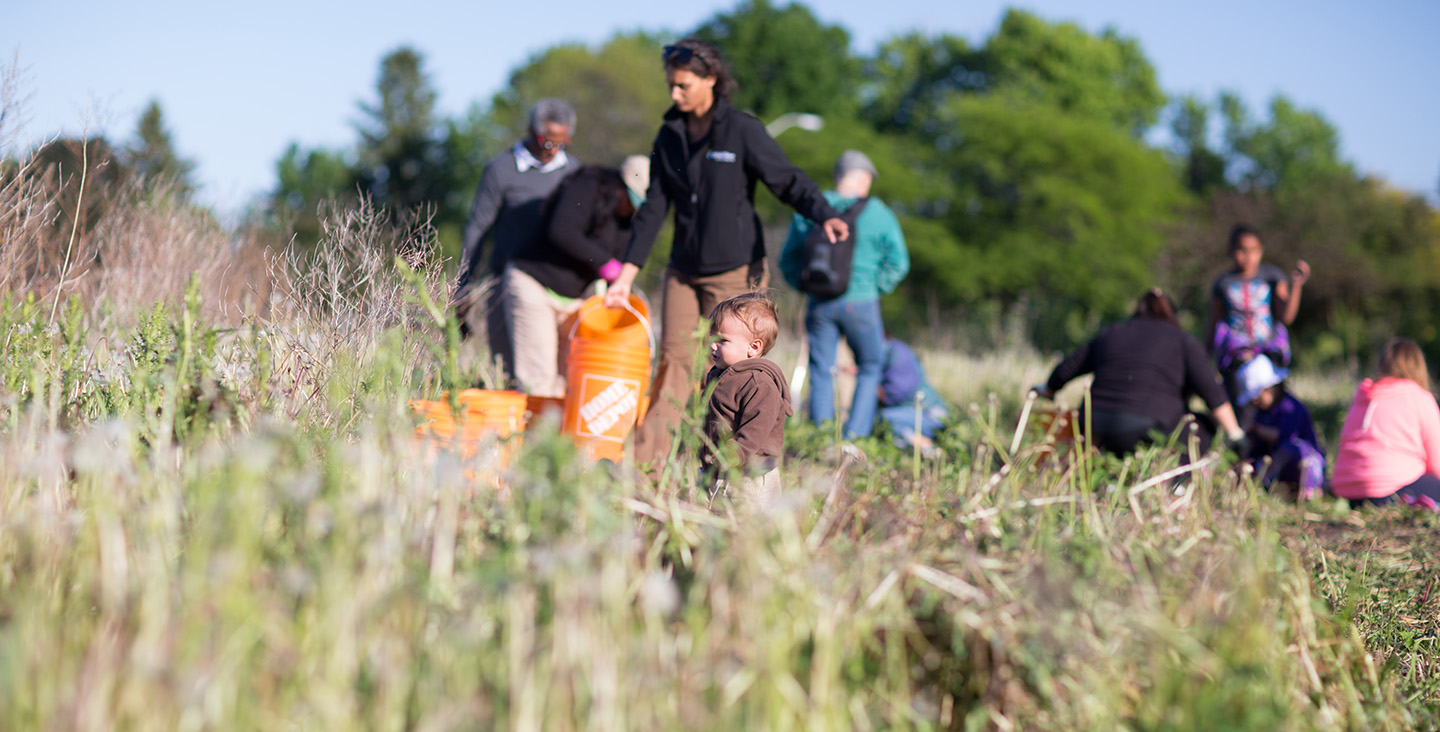 adults and children take part in a TRCA Highland Creek planting event