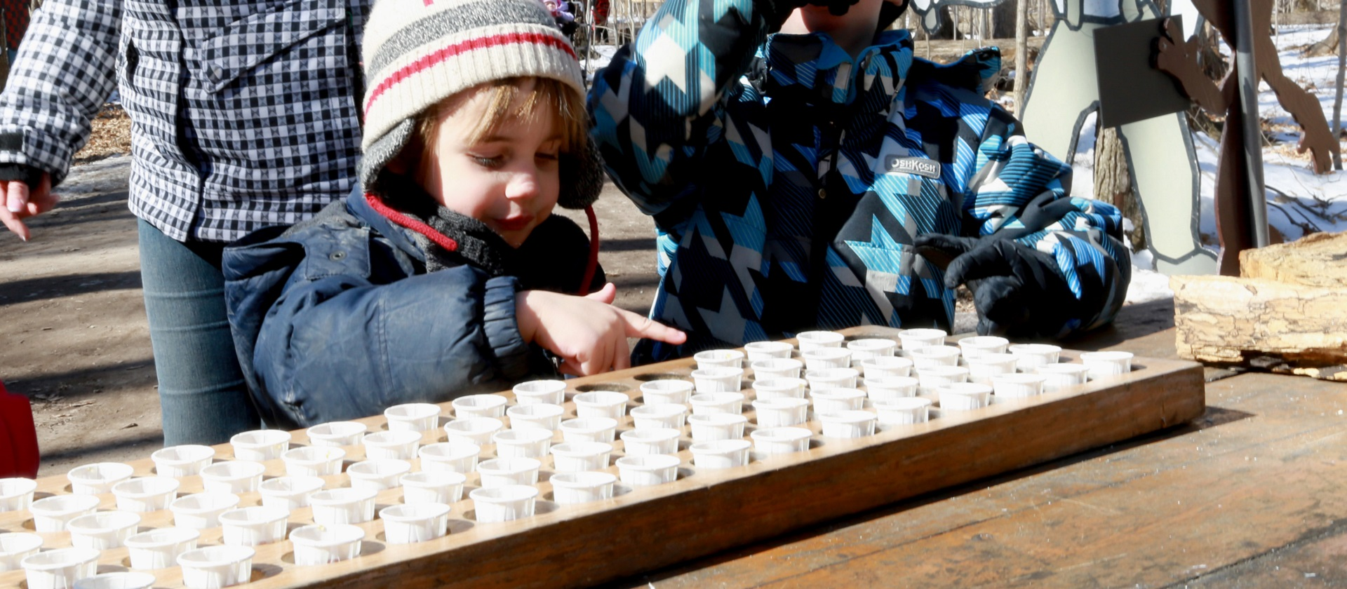 youngsters enjoy the sugarbush maple syrup festival at bruce's mill conservation park