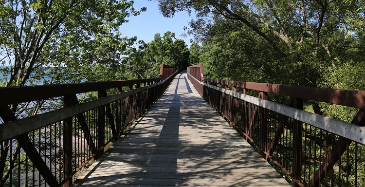 Waterfront trail bridge at petticoat creek conservation area