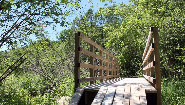 hiking boardwalk at bruce's mill conservation park