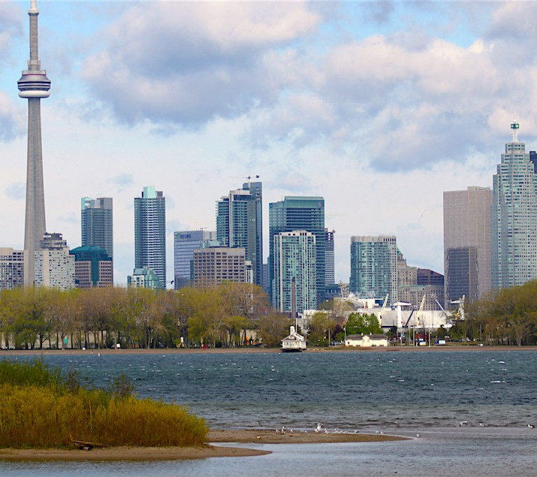 Tommy Thompson Park hero image