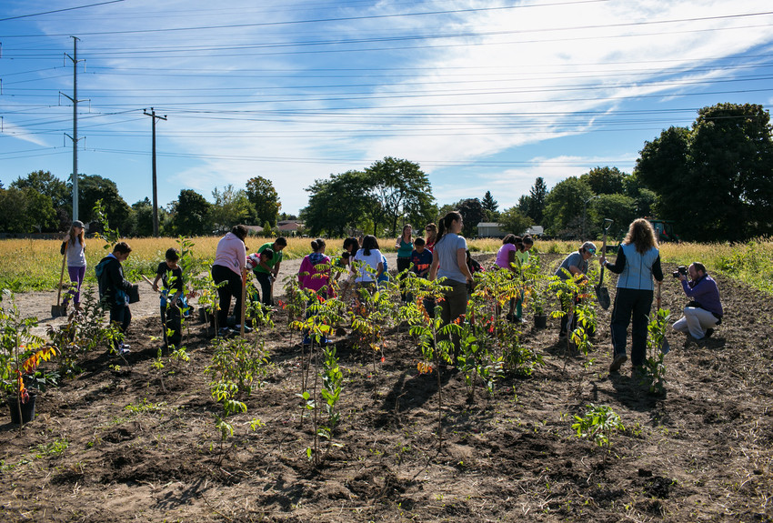 Students planting shrubs at The Meadoway in Scarborough, Ontario