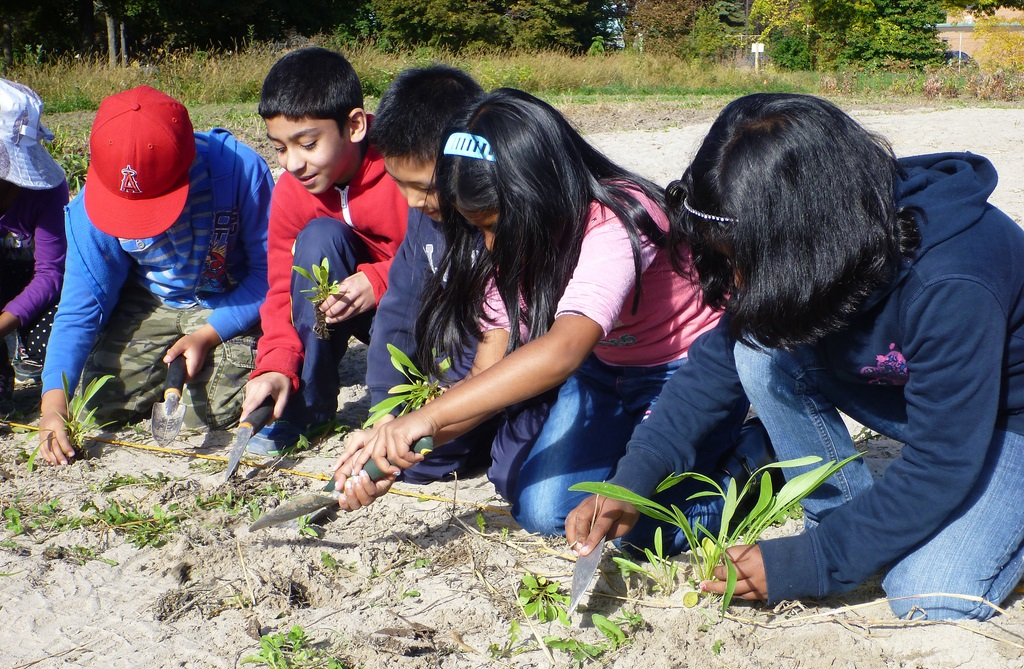 Highland Creek school planting project