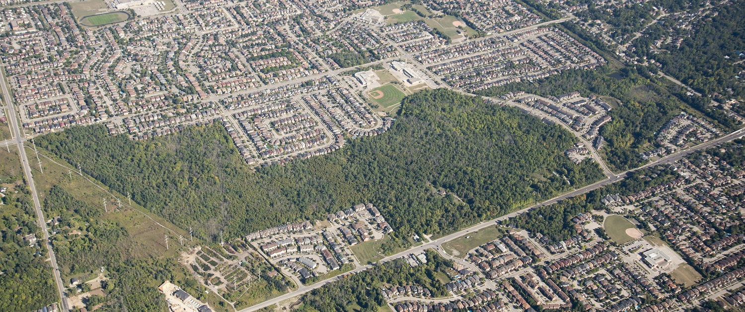 aerial view of Altona Forest in the City of Pickering