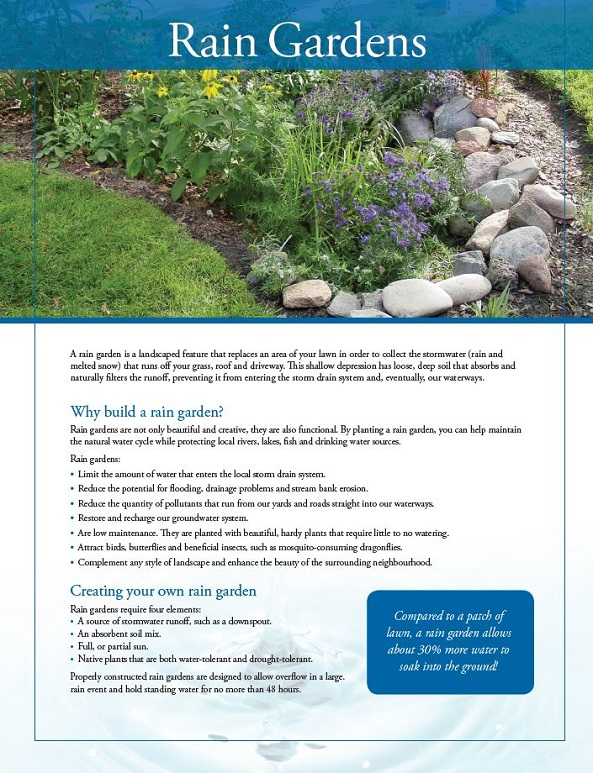 rain gardens fact sheet cover page