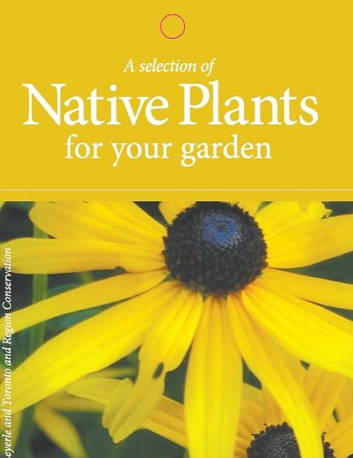 Native Plants fact sheet cover