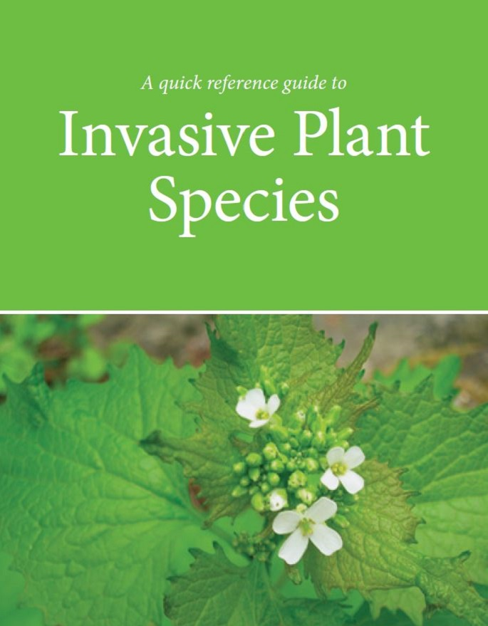 invasive plant species fact sheet