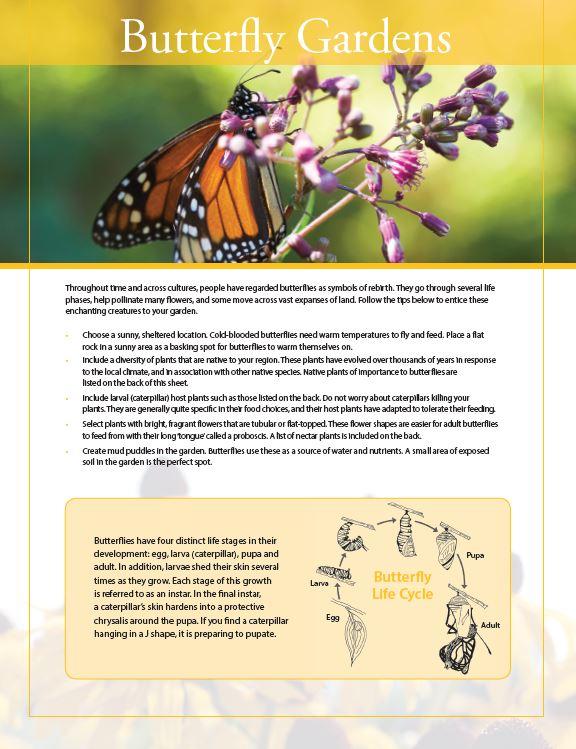 butterfly gardens fact sheet cover