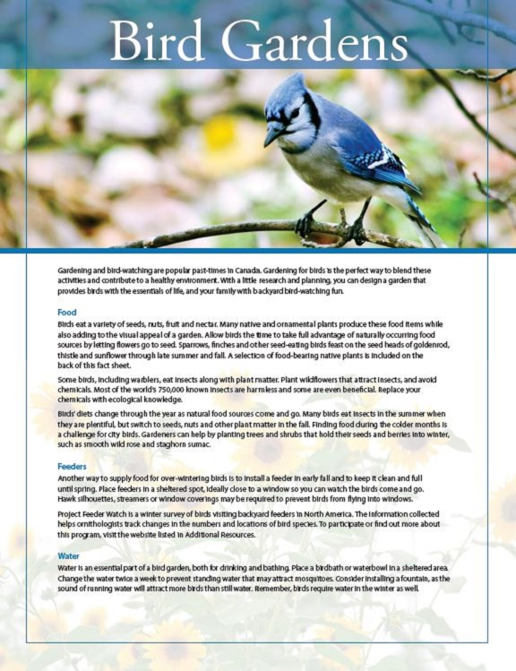 bird gardens fact sheet cover