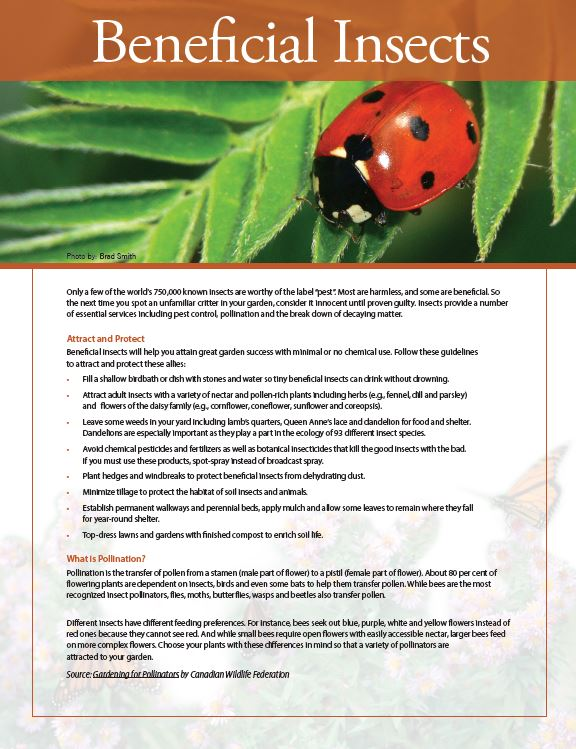 beneficial insects fact sheet cover